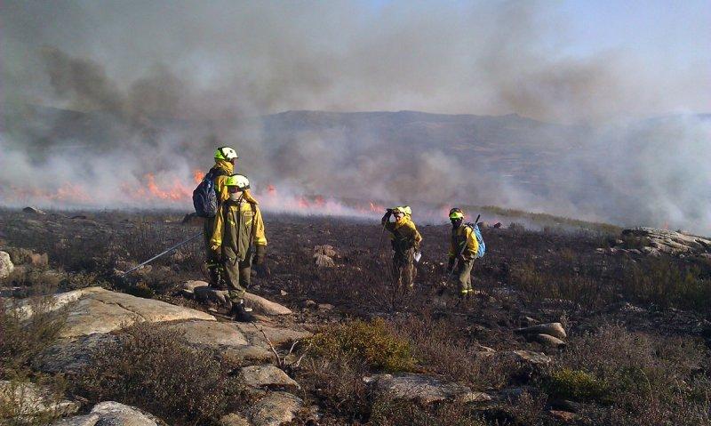 incendio forestal.jpg
